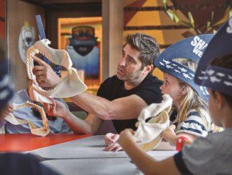 Bei Princess Cruises dreht sich während der Shark Week Ende Juli alles rund um den Hai. Foto: Princess Cruises