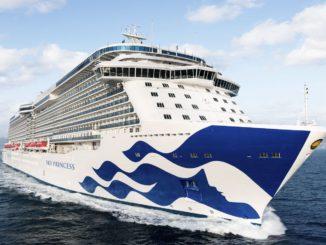 Das Flaggschiff der Reederei, die Sky Princess