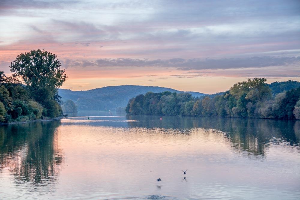 Flusskino pur: Sonnenuntergang über dem Main